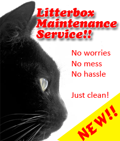 Cat-Tastic Litter Box Maintenance Program!! It's NEW!!